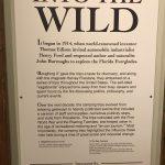 Into the Wild!